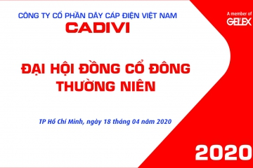 THE ANNUAL GENERAL MEETING OF SHAREHOLDERS IN 2020 OF VIETNAM ELECTRIC CABLES WIRE SUCCESSFULLY