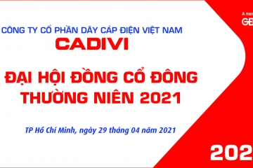 THE ANNUAL GENERAL MEETING OF SHAREHOLDERS IN 2021 OF VIETNAM ELECTRIC CABLES WIRE SUCCESSFULLY