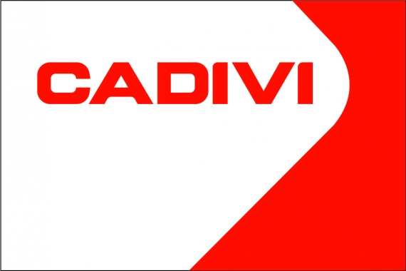 "CADIVI ORGANIZATION ""CUSTOMER CUSTOMER SERVICE CENTER CENTER CENTRAL VIETNAM 2017"""