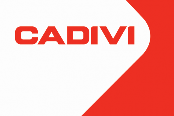 CADIVI successfully organized the Workers Conference in 2019