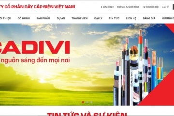 Officially launched new web site of cadivi